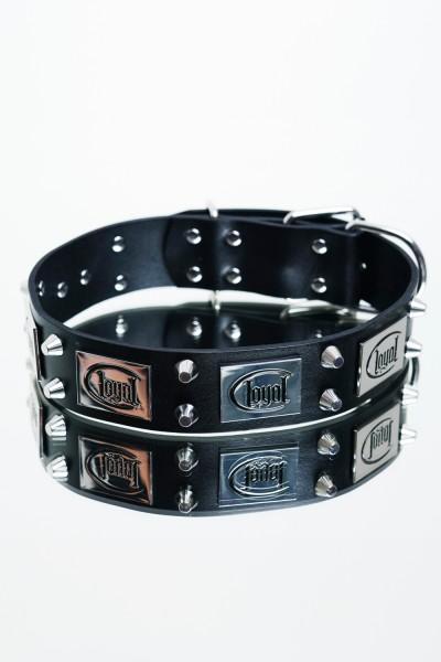 Loyal - Hundehalsband (breit)